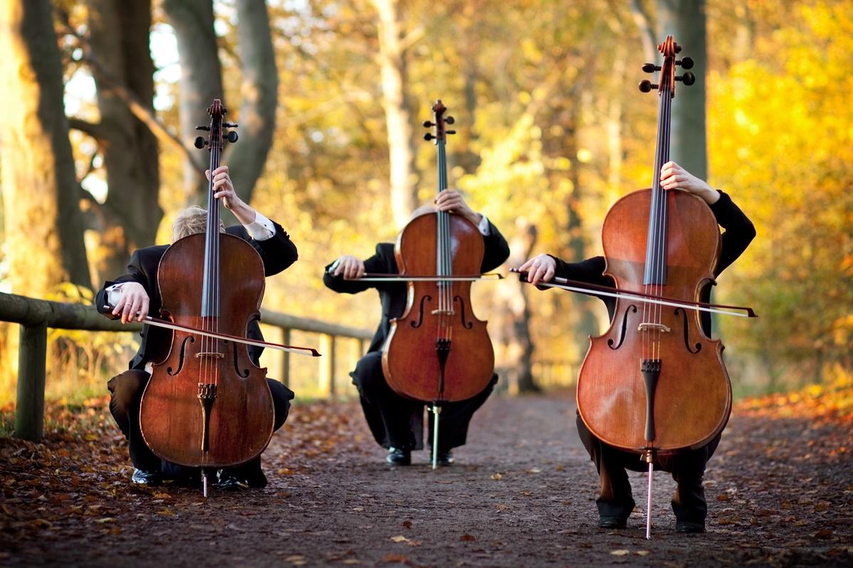 7 интересных фактов об оркестрах