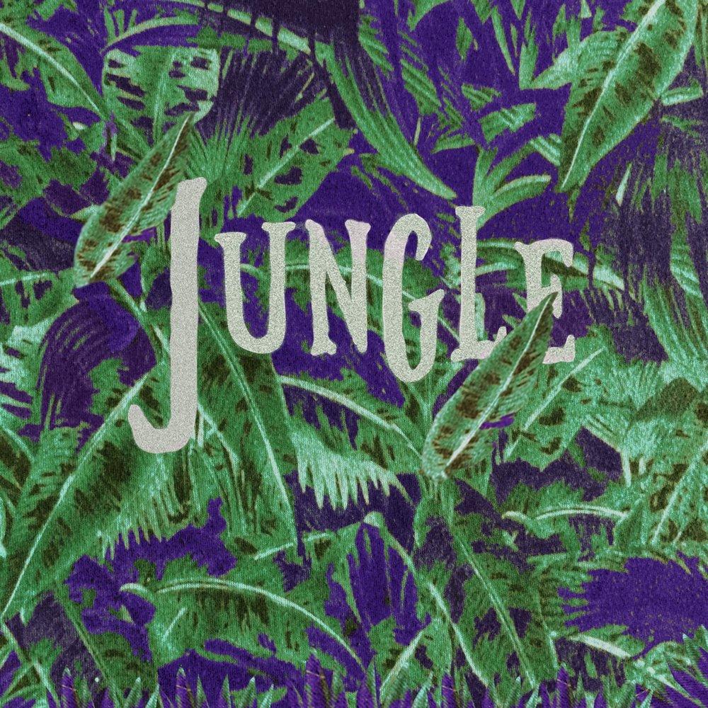 История Jungle и drum & bass музыки